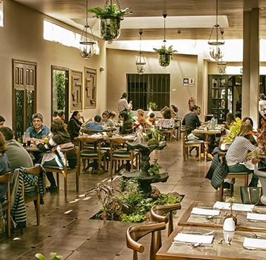 CASTA FIOR Restaurante - Comida FUSIóN - AREQUIPA - MESA 24/7 | AREQUIPA - Perú